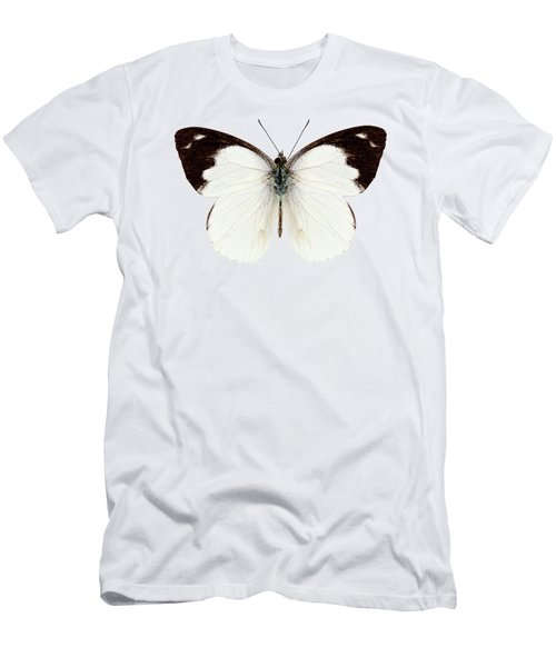 White Butterfly Species Apias Indra Indra Men's T-Shirt (Athletic Fit)