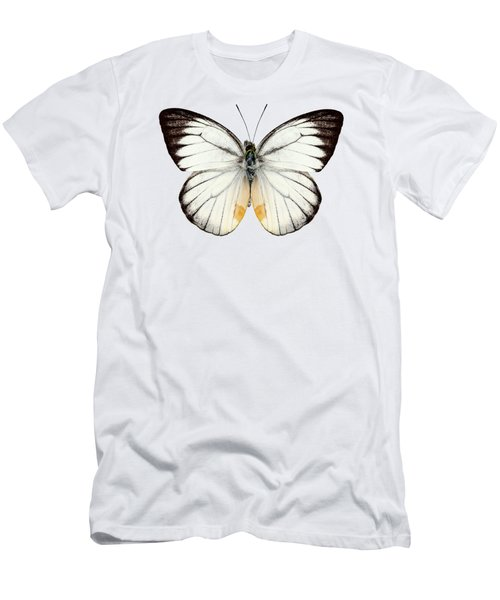 White Butterfly Species Delias Baracasa Men's T-Shirt (Athletic Fit)
