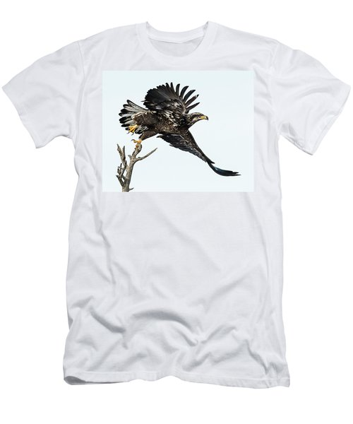 Bald Eagle Men's T-Shirt (Athletic Fit)
