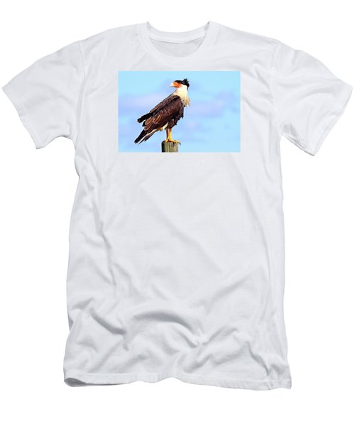 Crested Caracara Men's T-Shirt (Athletic Fit)