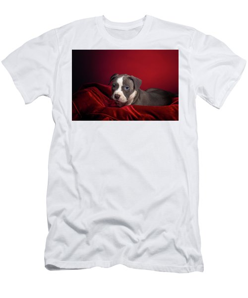 American Pitbull Puppy Men's T-Shirt (Athletic Fit)