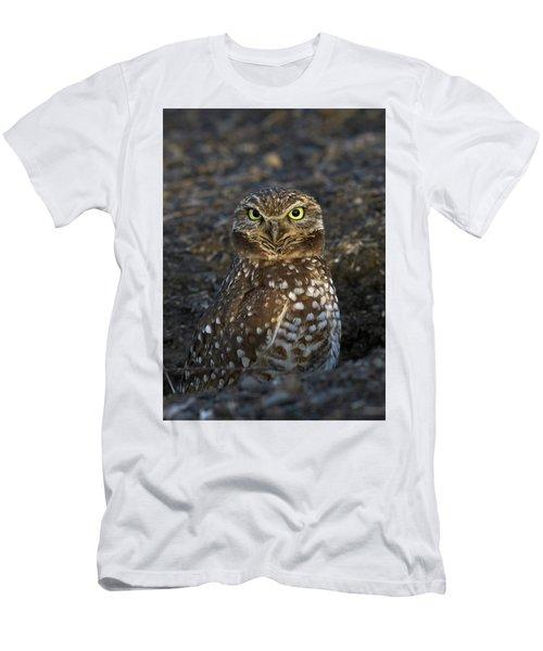 Burrowing Owl Men's T-Shirt (Slim Fit) by Doug Herr
