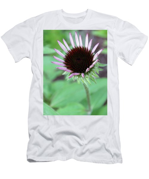 Emerging Coneflower Men's T-Shirt (Slim Fit) by Rebecca Overton