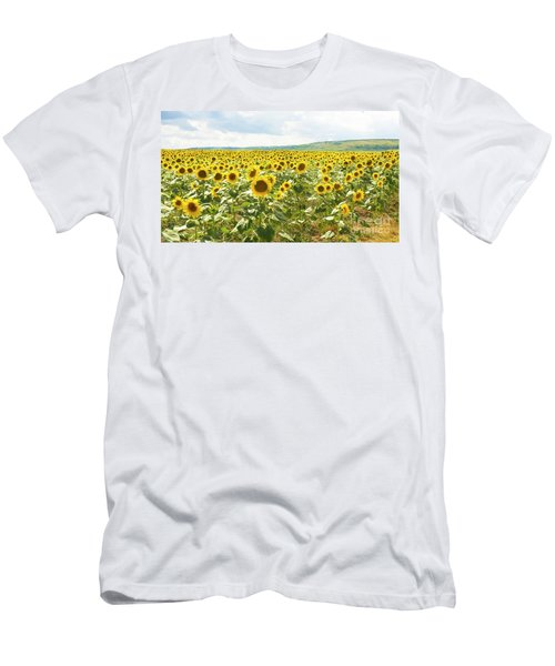 Field With Sunflowers Men's T-Shirt (Athletic Fit)