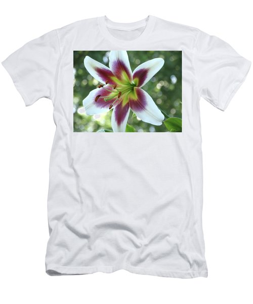 Oriental Lily Men's T-Shirt (Slim Fit) by Rebecca Overton
