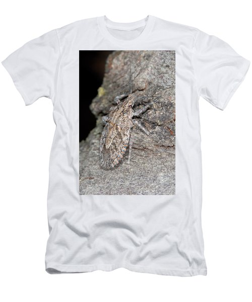 Stink Bug Men's T-Shirt (Athletic Fit)