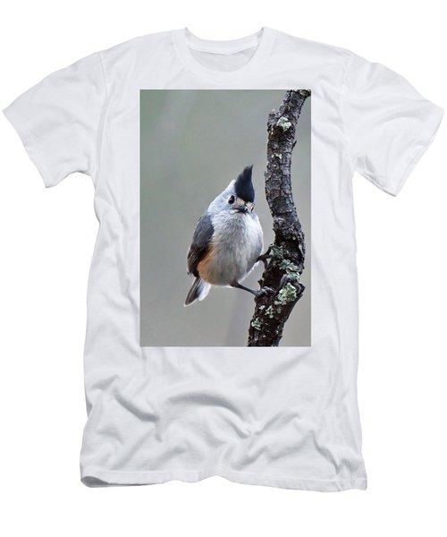 Tufted Titmouse Men's T-Shirt (Athletic Fit)