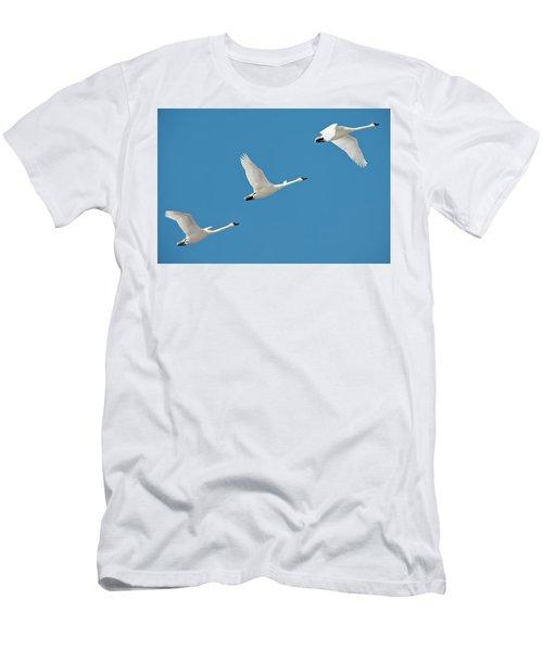 3 Montana Swans Men's T-Shirt (Athletic Fit)