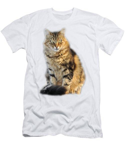 Sitting Cat Men's T-Shirt (Slim Fit) by George Atsametakis