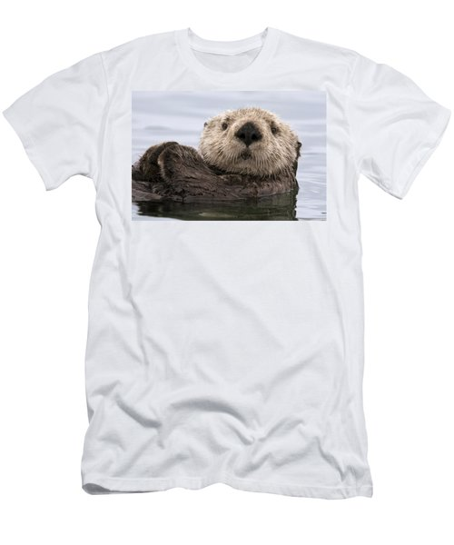 Sea Otter Elkhorn Slough Monterey Bay Men's T-Shirt (Athletic Fit)