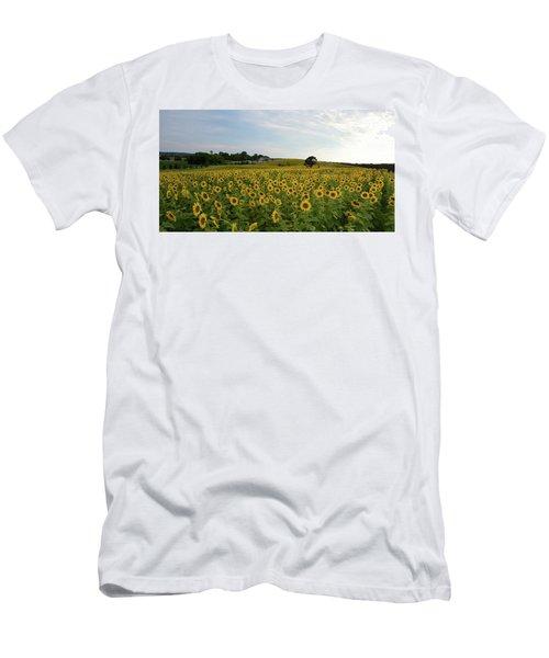 A Field Of Sunflowers Men's T-Shirt (Slim Fit)