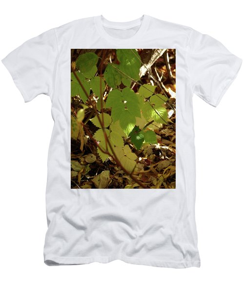 A Plant's Various Colors Of Fall Men's T-Shirt (Slim Fit) by DeeLon Merritt