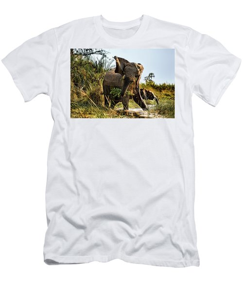 A Protective Mama Elephant With Calf  Men's T-Shirt (Athletic Fit)