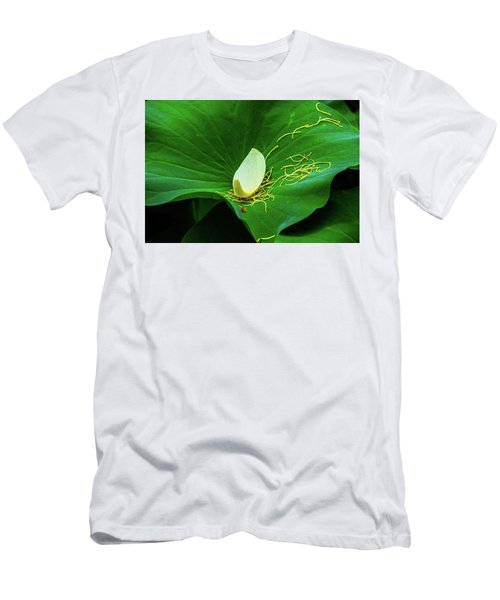Abstract Leaves Of Green And Yellow Men's T-Shirt (Athletic Fit)