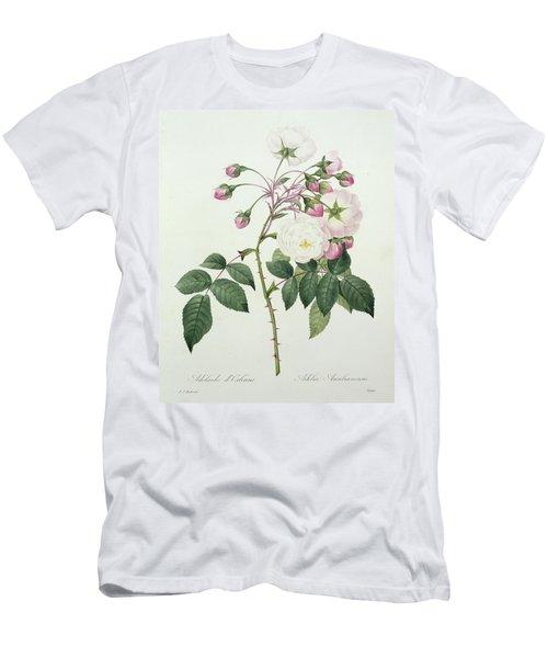 Adelia Aurelianensis Men's T-Shirt (Athletic Fit)