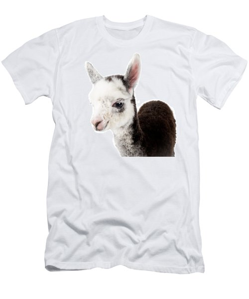 Adorable Baby Alpaca Cuteness Men's T-Shirt (Slim Fit) by TC Morgan