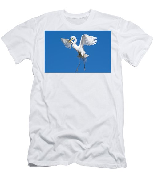 Aerial Ballet Men's T-Shirt (Slim Fit) by Kenneth Albin