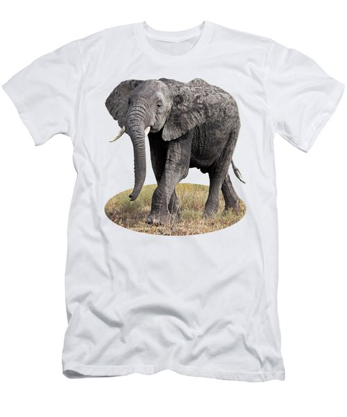 African Elephant Happy And Free Men's T-Shirt (Athletic Fit)