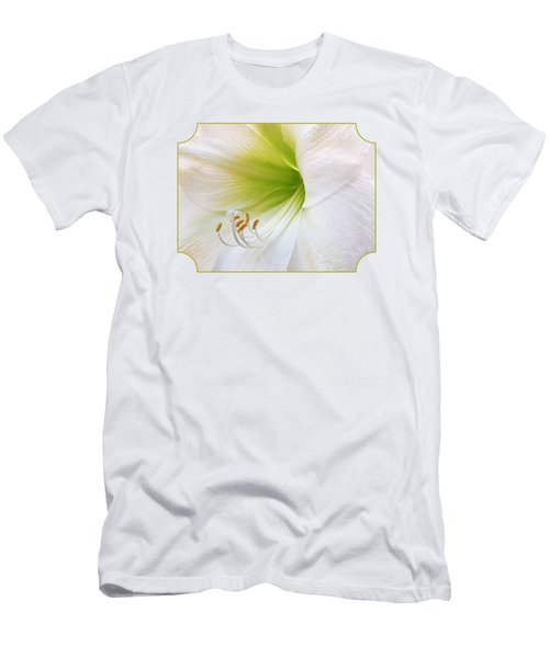 Alluring Amaryllis Men's T-Shirt (Slim Fit) by Gill Billington