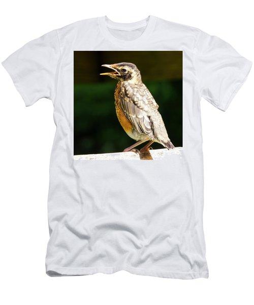 American Robin II Men's T-Shirt (Athletic Fit)