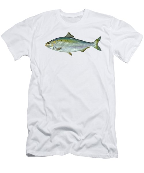 American Shad Men's T-Shirt (Athletic Fit)