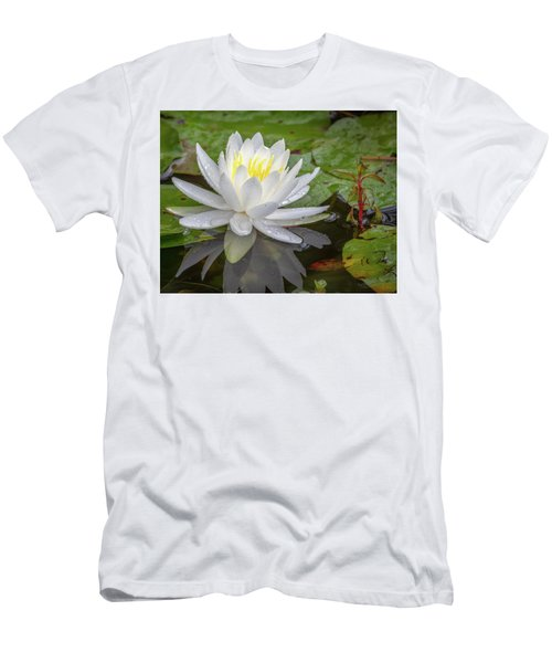 American White Water Lily Men's T-Shirt (Athletic Fit)