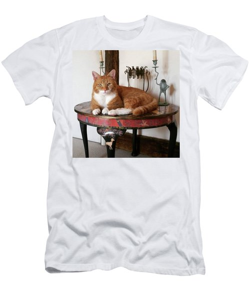 His Highness Men's T-Shirt (Athletic Fit)