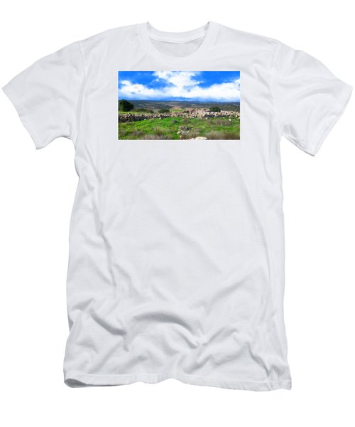 Ancient Ruins In Israel Men's T-Shirt (Athletic Fit)