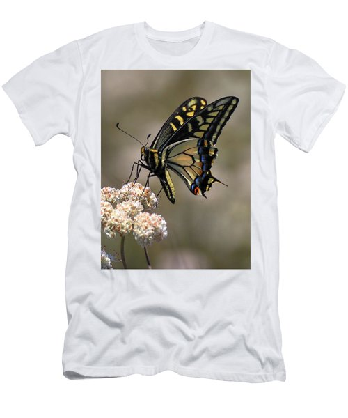 Anise Swallowtail Men's T-Shirt (Athletic Fit)