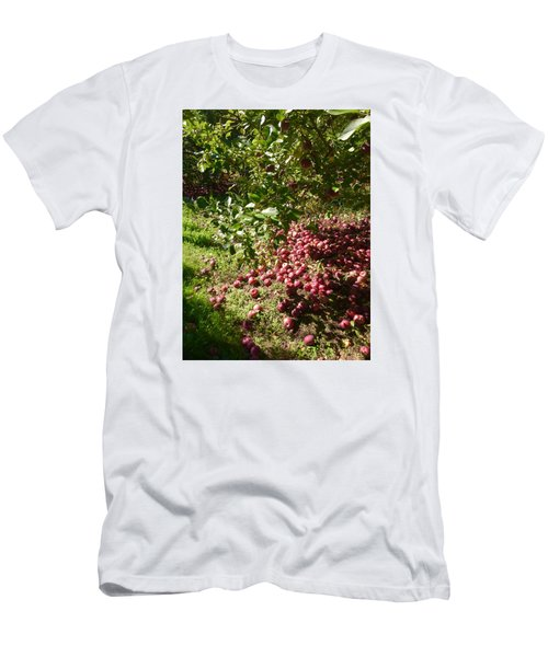 Apples...apples...everywhere Men's T-Shirt (Slim Fit) by Jason Nicholas