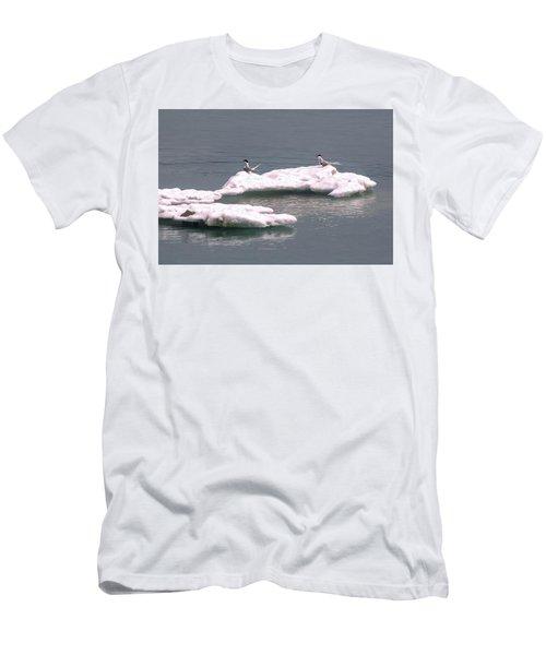 Arctic Terns On A Bergy Bit Men's T-Shirt (Athletic Fit)