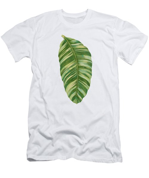 Rainforest Resort - Tropical Leaves Elephant's Ear Philodendron Banana Leaf Men's T-Shirt (Slim Fit) by Audrey Jeanne Roberts
