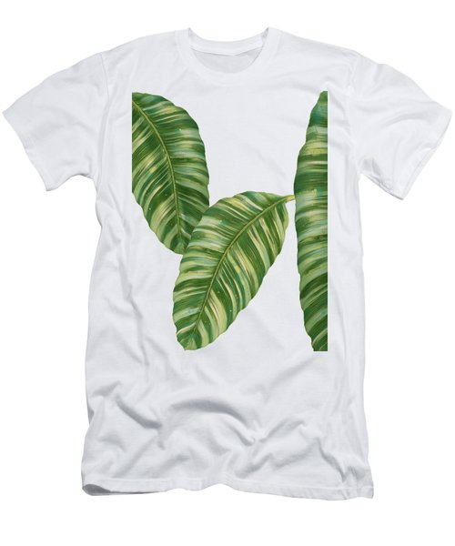 Rainforest Resort - Tropical Banana Leaf  Men's T-Shirt (Slim Fit) by Audrey Jeanne Roberts