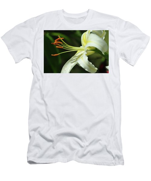 Asiatic Lily No 3 Men's T-Shirt (Athletic Fit)
