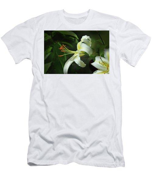Asiatic Lily No 4 Men's T-Shirt (Athletic Fit)