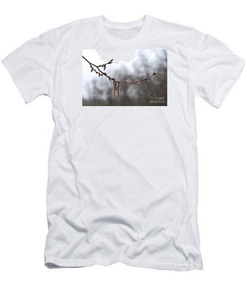 Aspen Catkins 20120316_15a Men's T-Shirt (Athletic Fit)