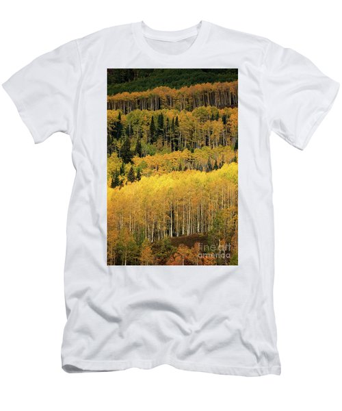 Aspen Groves Men's T-Shirt (Athletic Fit)