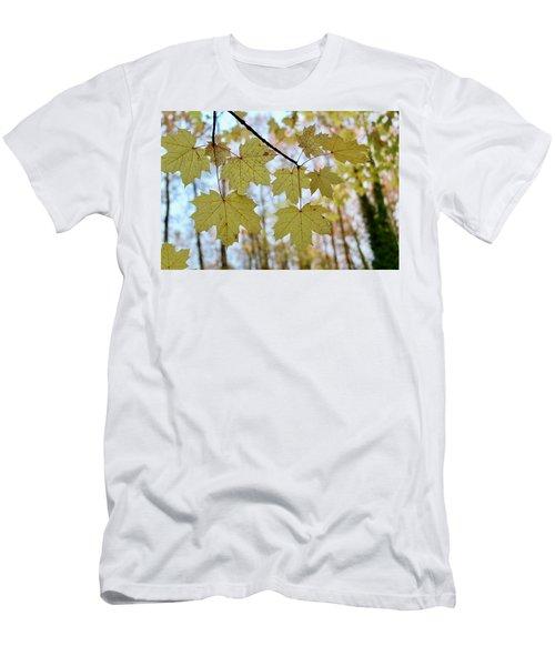 Autumn Beauty Men's T-Shirt (Athletic Fit)