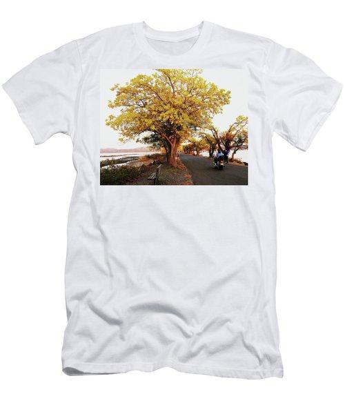 Autumn Causeway Men's T-Shirt (Athletic Fit)