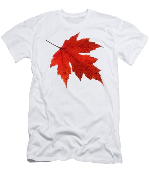 Autumn Leaf 2 Men's T-Shirt (Athletic Fit)