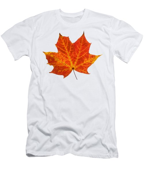 Autumn Leaf 3 Men's T-Shirt (Athletic Fit)