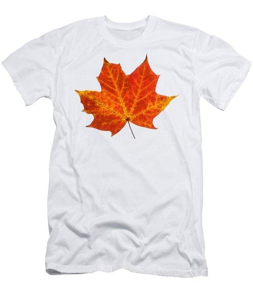 Autumn Leaf 3 Men's T-Shirt (Athletic Fit)