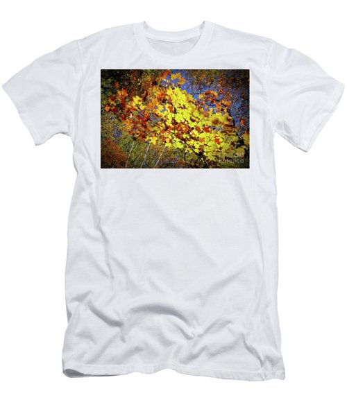 Autumn Light Men's T-Shirt (Slim Fit) by Tatsuya Atarashi