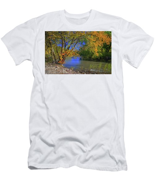 Autumn On The North Raccoon Men's T-Shirt (Athletic Fit)