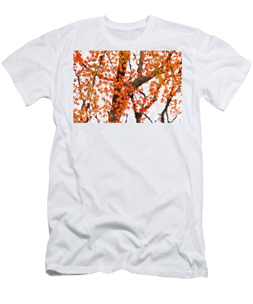 Autumn Red Leaves On A Tree   Men's T-Shirt (Athletic Fit)
