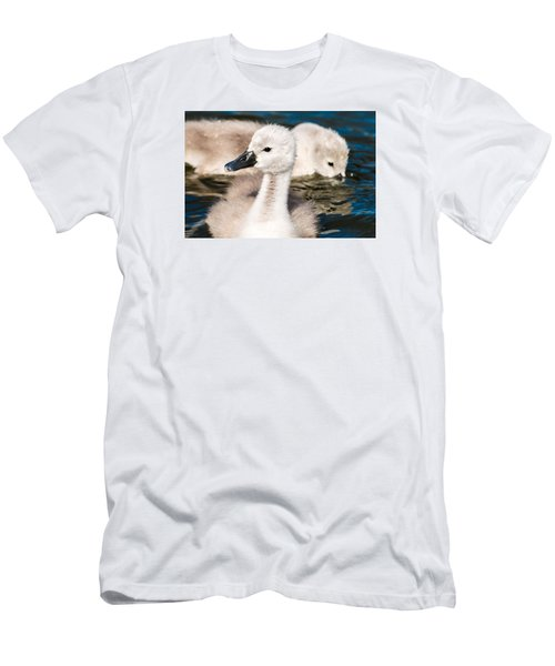 Baby Swan Close Up Men's T-Shirt (Athletic Fit)