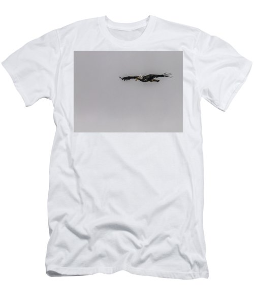 Bald Eagle Gliding Men's T-Shirt (Athletic Fit)