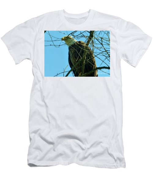 Bald Eagle Keeping Guard Men's T-Shirt (Athletic Fit)