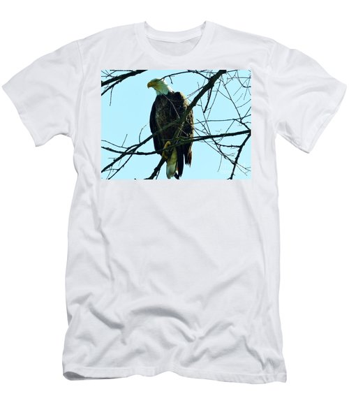 Bald Eagle Over The Root River Men's T-Shirt (Athletic Fit)