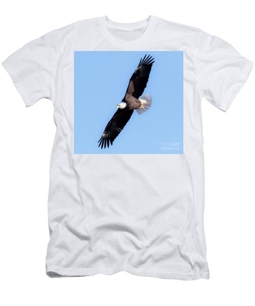 Bald Eagle Overhead  Men's T-Shirt (Athletic Fit)